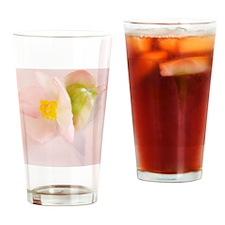 BegoniaPinKTwkt3_5.75x4.5_cp5554 Drinking Glass