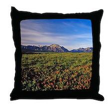 Prairie Smoke wildflowers in Waterton Throw Pillow
