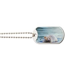 black bear wading in a river Dog Tags