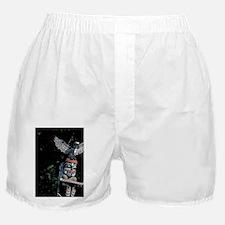 Totem pole with eaglebia, Stanley Par Boxer Shorts