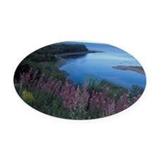 Gaspe Peninsula (Gaspesie). Coasta Oval Car Magnet
