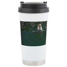 Victoria. Harbor Seals (Phoca v Travel Mug