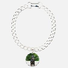 IMG_1654[1] Bracelet