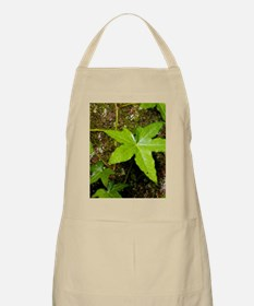 with English ivy Apron