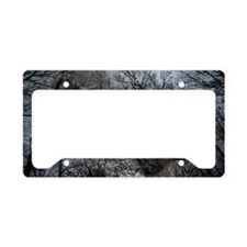 Enchanted forest License Plate Holder