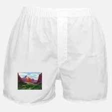 Zion: Down Canyon Boxer Shorts
