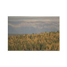 Cranbrook. Mountain Landscape / A Rectangle Magnet