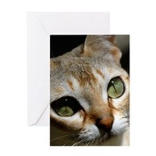 DS1753 Greeting Card