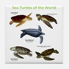Sea Turtles of the World Tile Coaster