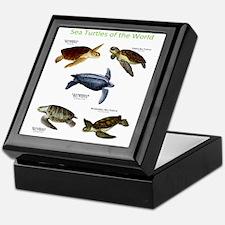 Sea Turtles of the World Keepsake Box