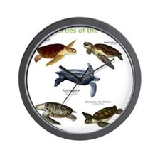 Sea Turtles of the World Wall Clock