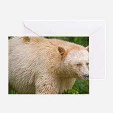 A white variety of the black bears R Greeting Card