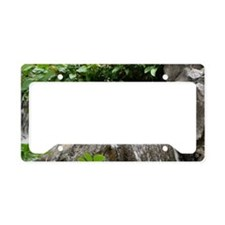 Waterfall License Plate Holder