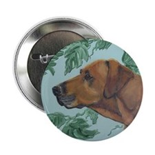 "SQ RhodesianRidgeback 2.25"" Button"