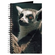 Ring Tailed Lemur Journal