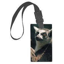 Ring Tailed Lemur Luggage Tag