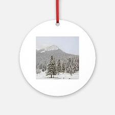 Canada, Alberta, Lake Louise. Farim Round Ornament