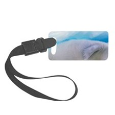 Gulf of St. Lawrence. Harp Seal  Luggage Tag
