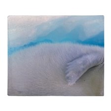 Gulf of St. Lawrence. Harp Seal (pho Throw Blanket