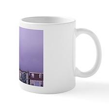 NA, Canada, Newfoundland, St. John's. W Mug