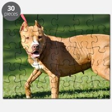 Carmen Puzzle