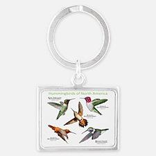 Hummingbirds of North America Landscape Keychain