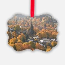 Nelson. Autumn View of Town from  Ornament