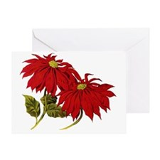 Poinsettia2 Greeting Card