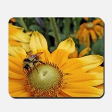 Bees on yellow flowers Butchart Gardens  Mousepad