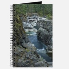 Little Qualicum Falls Provincial Park Journal
