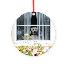 Zak in the windowA Round Ornament