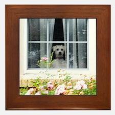 Zak in the windowA Framed Tile
