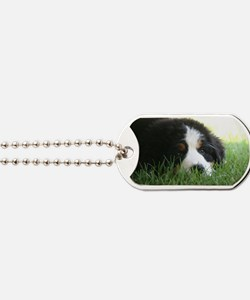 Mia_16x Dog Tags