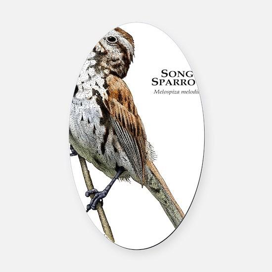 Song Sparrow Oval Car Magnet