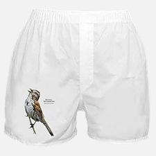 Song Sparrow Boxer Shorts