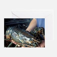 Bonaventure. Fresh lobsterbec, Gaspe Greeting Card