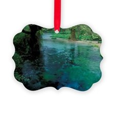 Natural spring of cold waterring, Ornament