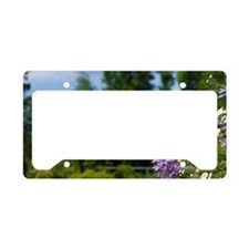 Historic Victorian city garde License Plate Holder