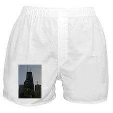 IMG_8097 Boxer Shorts