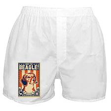 american_beagle_bruno_lg Boxer Shorts