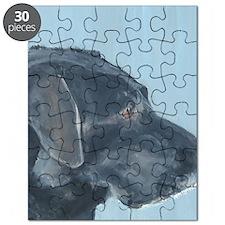 SQ BlackLab Puzzle