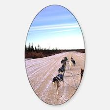 Dog sledding team on the tundra nea Sticker (Oval)