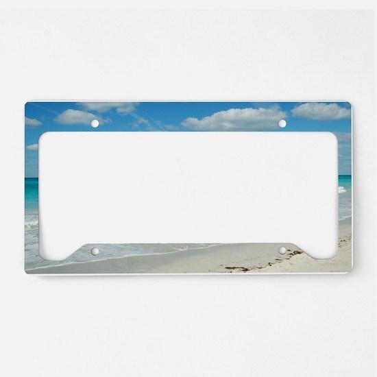 DSC_7368-1 License Plate Holder