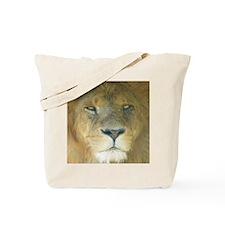 Lion square Tote Bag