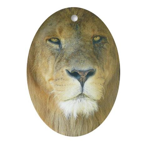 Lion camera Oval Ornament
