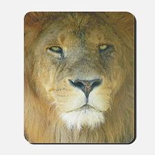 Lion pposter Mousepad