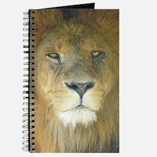 Lion pposter Journal