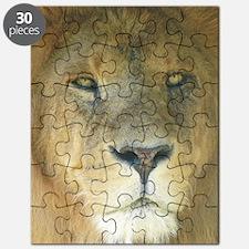 Lion journal Puzzle