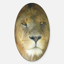 Lion journal Decal
