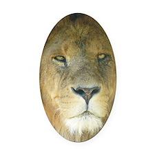 Lion journal Oval Car Magnet